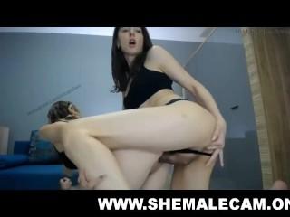 transsexual fuck female ladyboy mounts broad chaturbate nude cam